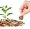 NexxStars Review Investment Company