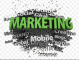 Marrying Innovation and Automated Marketing Platforms