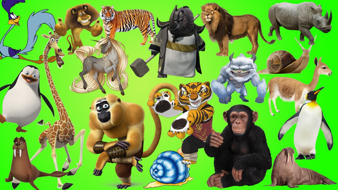 Wild Animals Learn Alphabet With Cartoon Real Animals For Children Abc Wild Animals Names And Sounds Teachers Pay Teachers Learn Alphabet With Cartoon Real Animals For Children Abc Wild